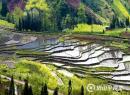 5月7日,洪雅乡村徒步一日游
