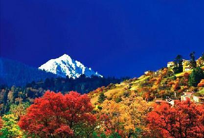 四川彩林进入适宜观赏时期 目前这8个地方最美