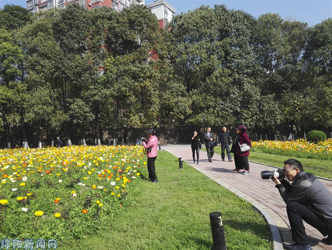 踏青 赏花 农家乐 绵阳人纷纷出门享受春日暖阳图片