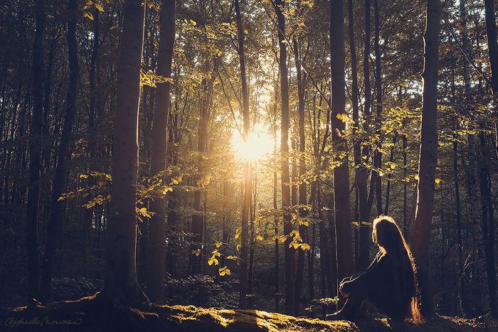 【蜂·辞典】森系:不只是在森林里拍的照片