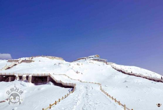 眉山在下开水,这个地方是真的下雪了