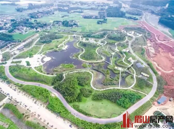 青神竹林湿地公园