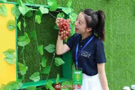 第九届中国彭山葡萄节开幕啦!3万亩葡萄等你尝甜头