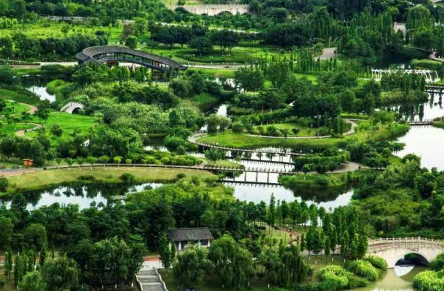 《东坡湿地一角》——蹇蓉 【摄影师每日一图赞眉山】