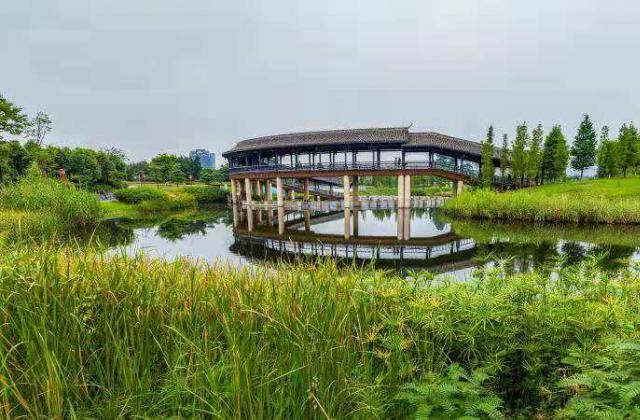 《公园美容师》《碧水连天东坡湖》《秋日东坡湖》—李荣华 【摄影师每日一图赞眉山】