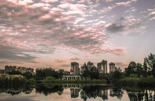 《湿地公园晚霞》+任明康【摄影师每日一图赞眉山】