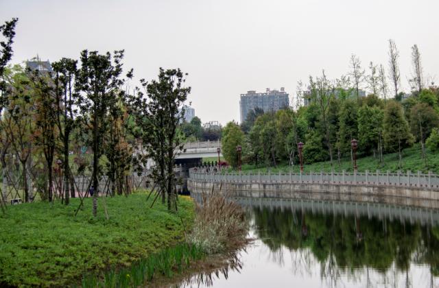《清山綠水》攝影:張曉容 【攝影師每日一圖贊眉山】