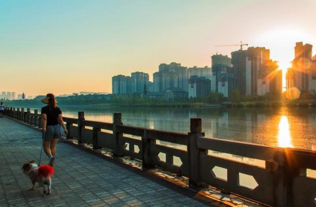 《濕地公園一角》《東坡湖畔》蹇蓉【攝影師每日一圖贊眉山】