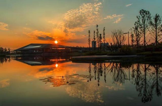 《夕陽無限好》《幾度夕陽紅》蹇蓉 【攝影師每日一圖贊眉山】