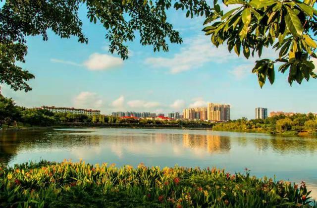 《東坡湖畔陽光燦爛》《美麗的東坡湖畔》蹇蓉【攝影師每日一圖贊眉山】