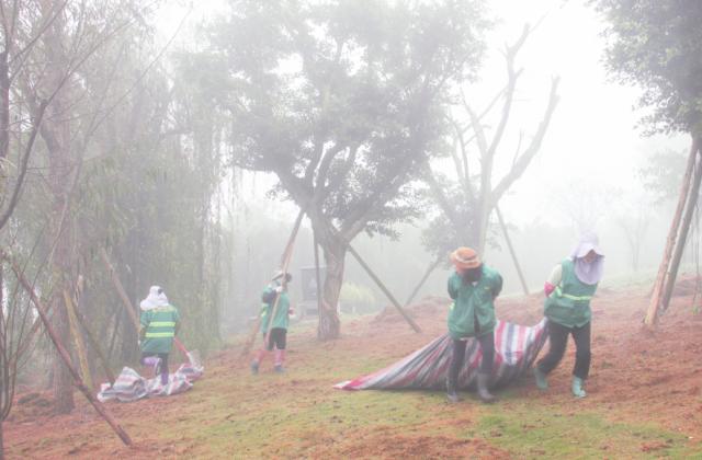 《大雾中的环卫工》摄影:张晓容【摄影师每日一图赞眉山】