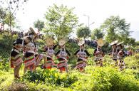 一年一度的新平花街节,又被称为情人节是花腰傣的独特传统节日。花腰傣是少数民族傣...