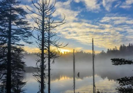 ?太仙了!瓦屋山景區云海、佛光頻現美如仙境!