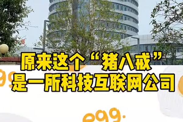 最近岷东新区有一栋楼吸引了很多人的目光